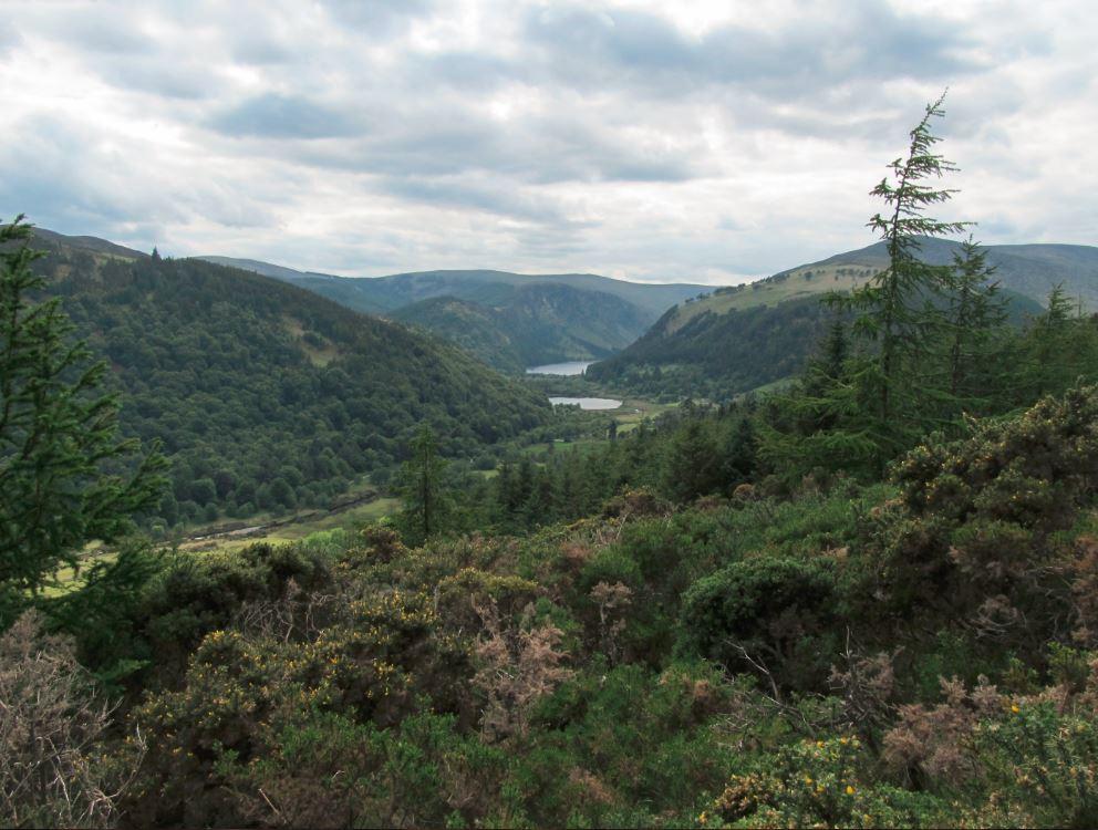 Blick auf Glendalough